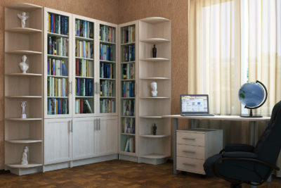Распашной шкаф РШ-008